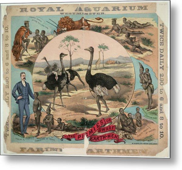 Royal Aquarium Metal Print