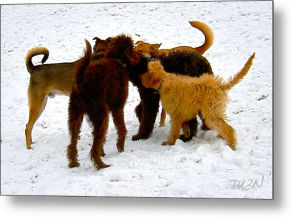Bow-wow Powwow Metal Print