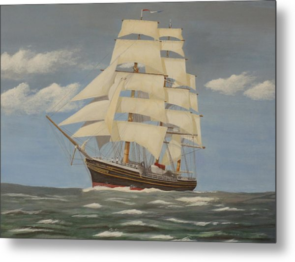 Running With The Wind Metal Print by James Lawler