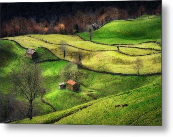 Rural Life Metal Print by Oskar Baglietto