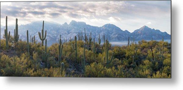 Saguaro Cactus With Mountain Range Metal Print