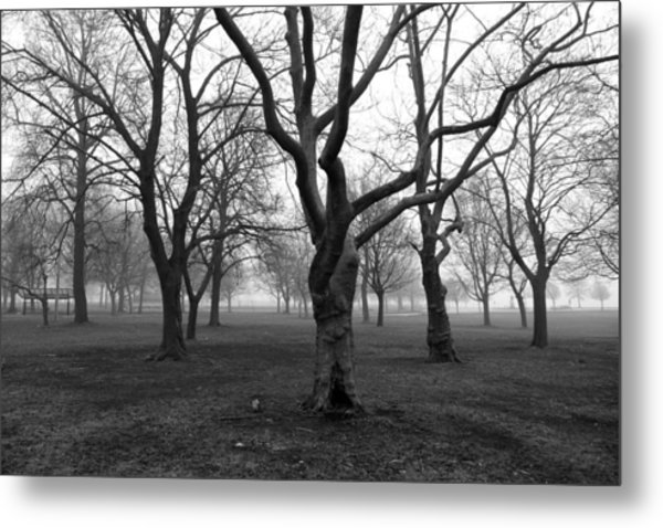 Seaside By The Tree Metal Print