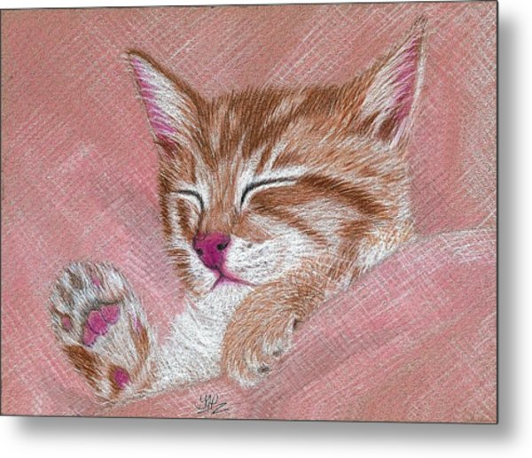 Sleeping Kitty Metal Print