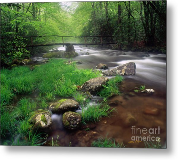Smoky Mountain Stream 2009 Metal Print