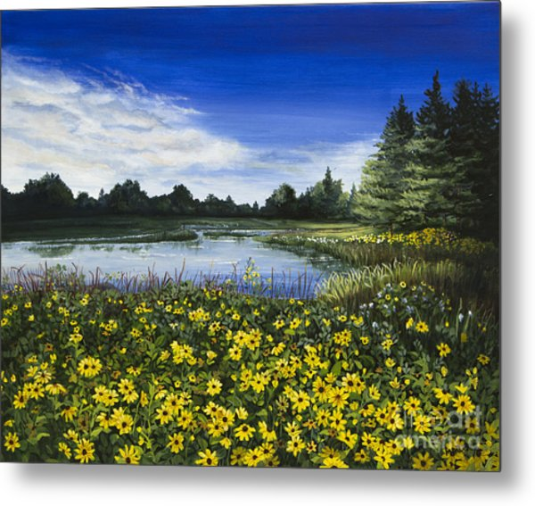 Summer Susans Metal Print