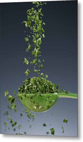 1 Tablespoon Chives Metal Print