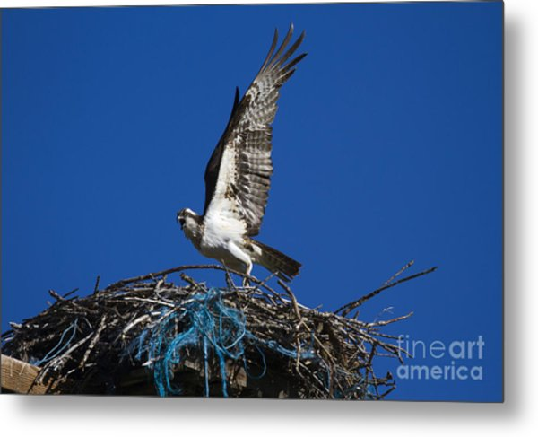 Take-off Metal Print