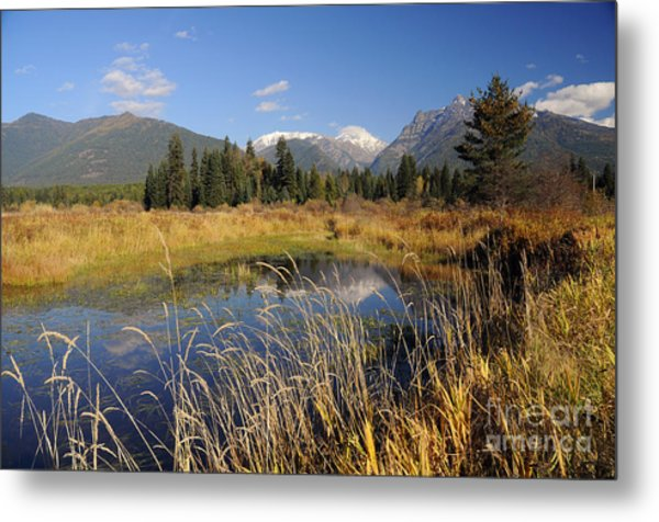 1123a The Cabinet Mountains  Metal Print