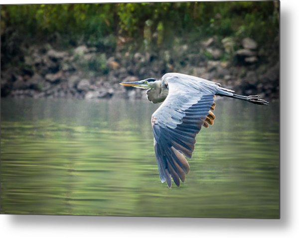 The Glide Metal Print