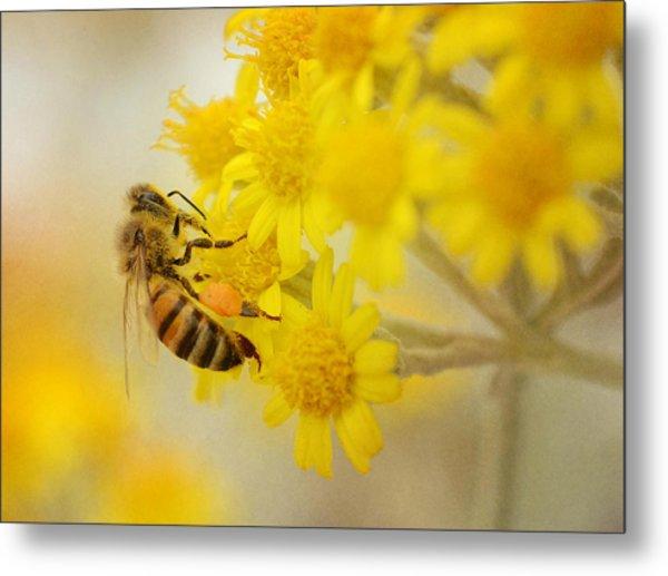 The Pollinator 2 Metal Print