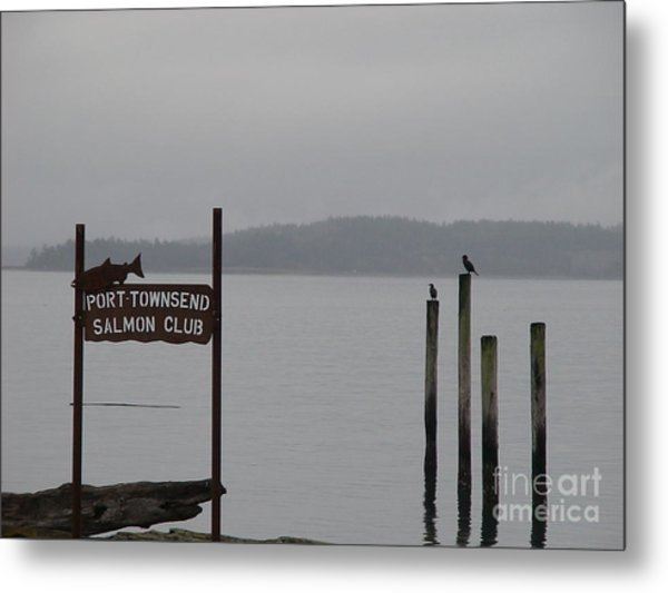 The Salmon Club Metal Print