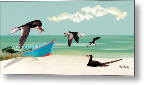 The Skimmers Of Margaritaville Metal Print