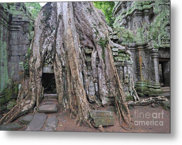 Tree Roots On Ruins At Angkor Wat Metal Print by Sami Sarkis