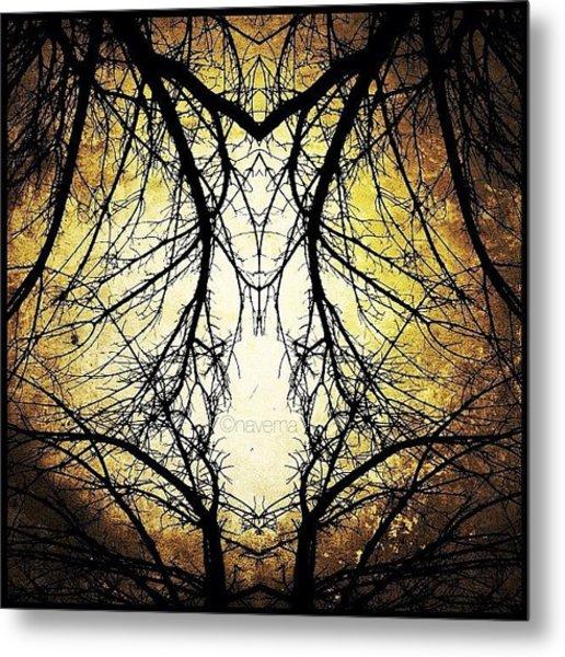 Tree Veins Metal Print