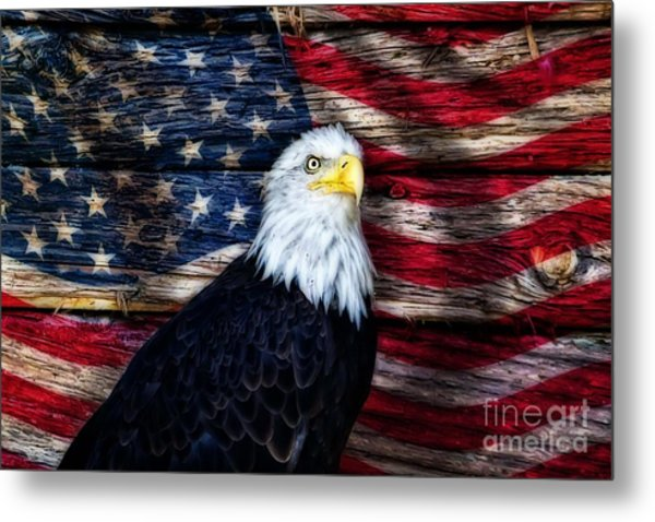 United We Stand Metal Print