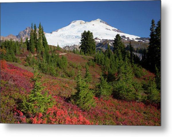 Usa, Washington State, Mount Baker Metal Print by Jamie and Judy Wild