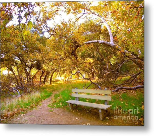 Visionary's Path Metal Print
