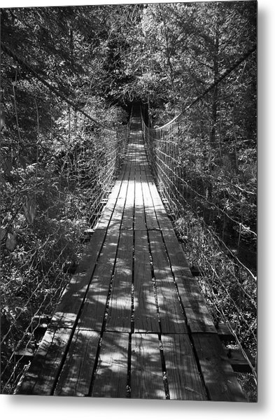 Walk Through Woods Metal Print