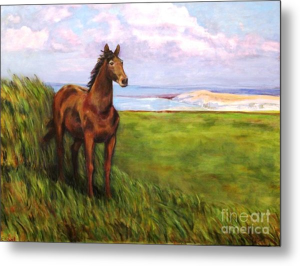 Welsh Breezes Metal Print by Ellen Howell