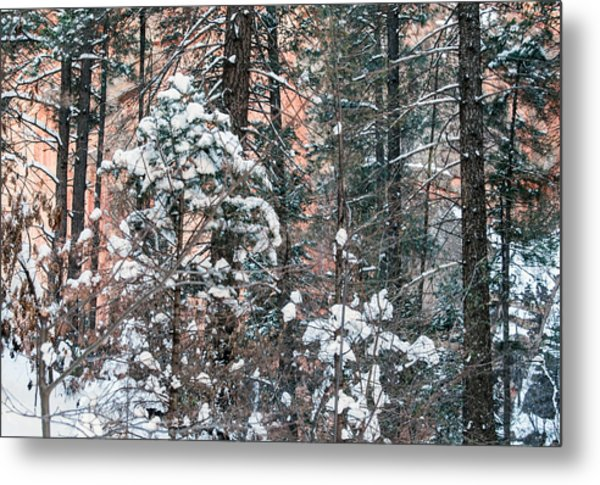 West Fork Snow Metal Print