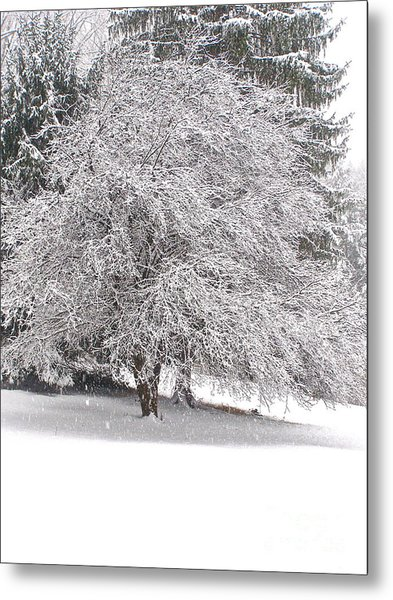White As Snow Metal Print
