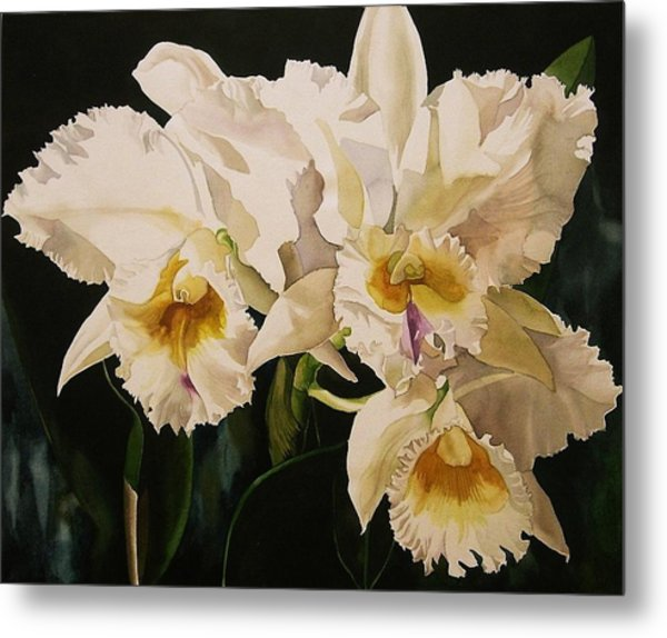 White Cattleya Orchids Metal Print