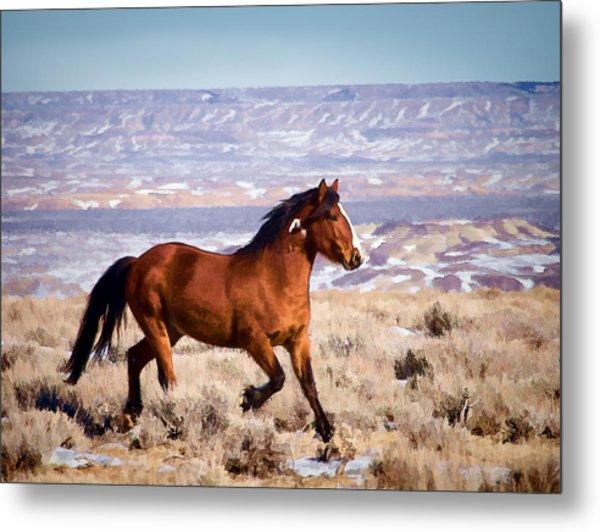 Eagle - Wild Horse Stallion Metal Print