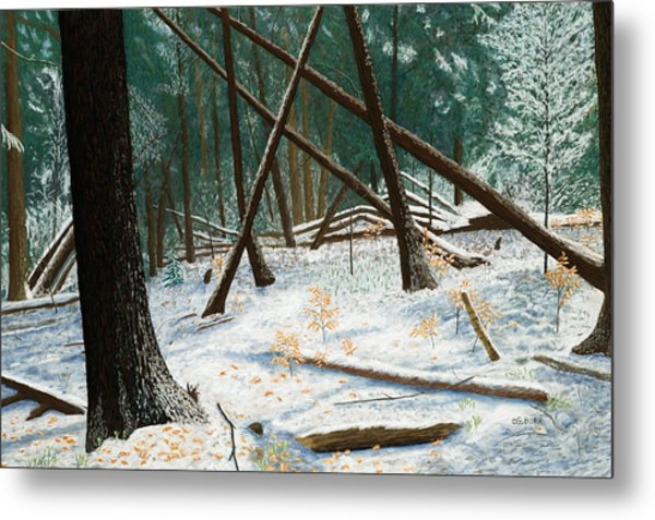 Windswept Woods Metal Print