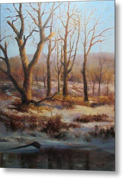 Winter Marsh And Beyond Metal Print