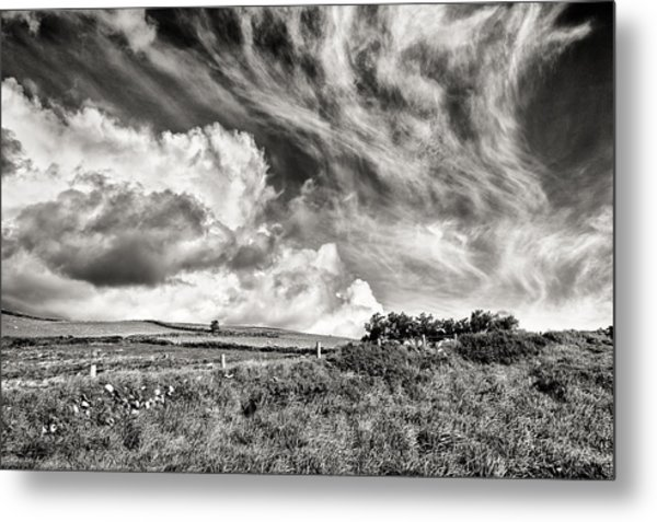 Written In The Wind Metal Print
