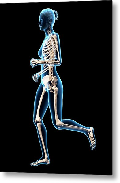 Skeletal System Of Runner Metal Print