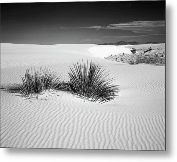Usa, New Mexico, White Sands National Metal Print