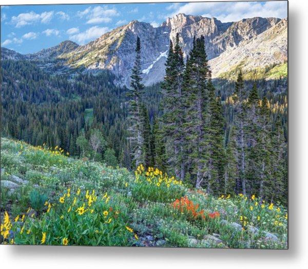 Wasatch Mountains Of Utah Metal Print