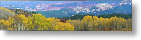 Aspen Trees In A Forest, Boulder Metal Print