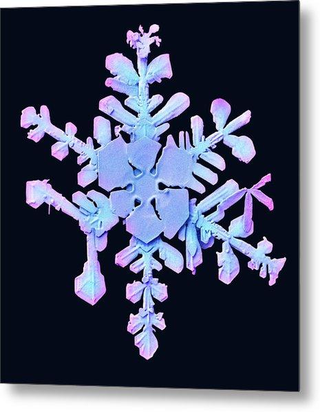 Snowflake Metal Print by Ars/us Dept Of Agriculture