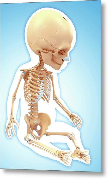 Baby's Skeletal System Metal Print by Pixologicstudio