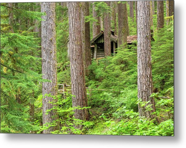 Usa, Washington, Olympic National Park Metal Print