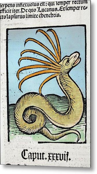 1491 Cerastes Lure Snake Hortus Sanitatis Metal Print