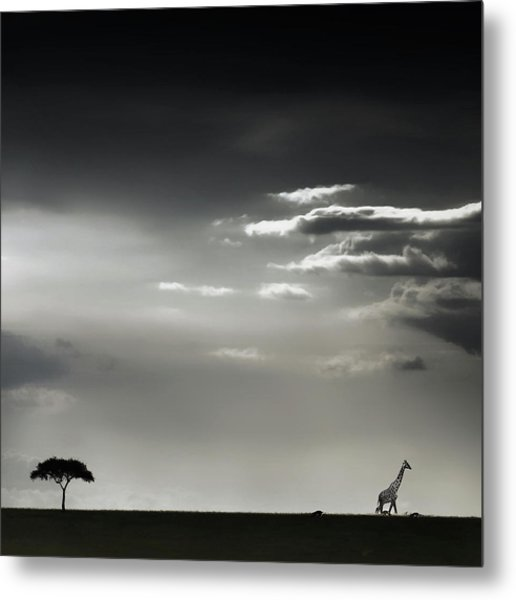 15 Minutes Of Happiness Metal Print by Piet Flour