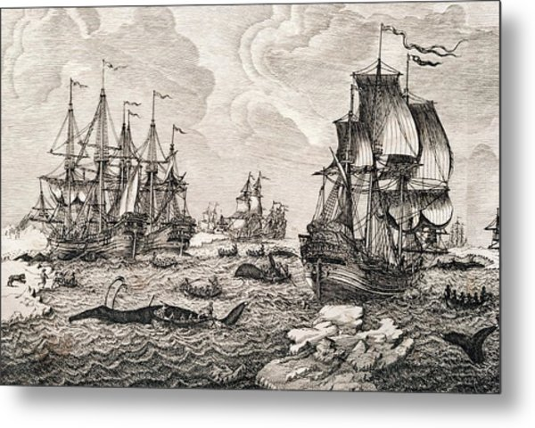 18th Century Dutch Whaling Fleet Metal Print by George Bernard/science Photo Library