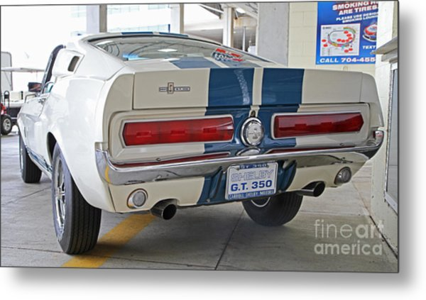 1967 Mustang Shelby Gt-350 Metal Print