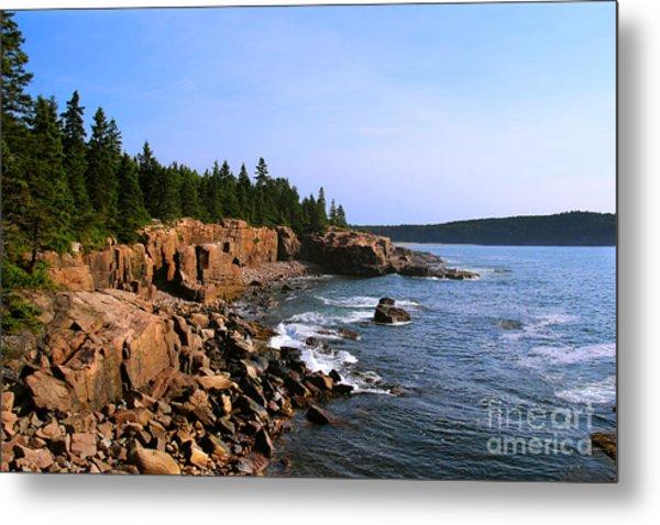 Acadia Coast Metal Print