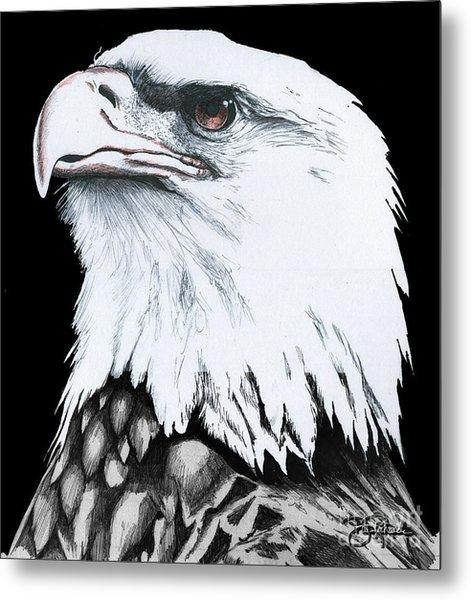 American Bald Eagle Metal Print