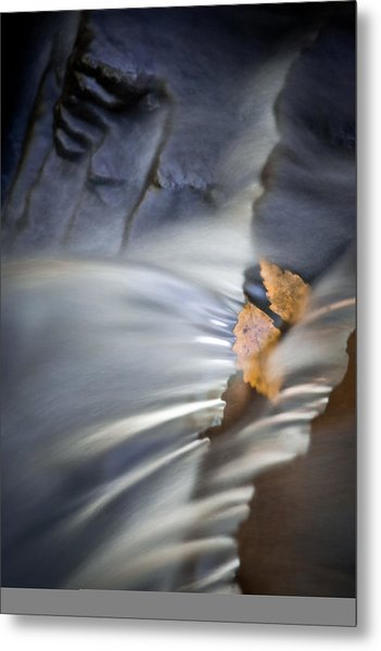 Autumn Color Caught In Time Metal Print