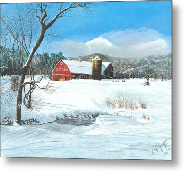 below freezing in New England Metal Print