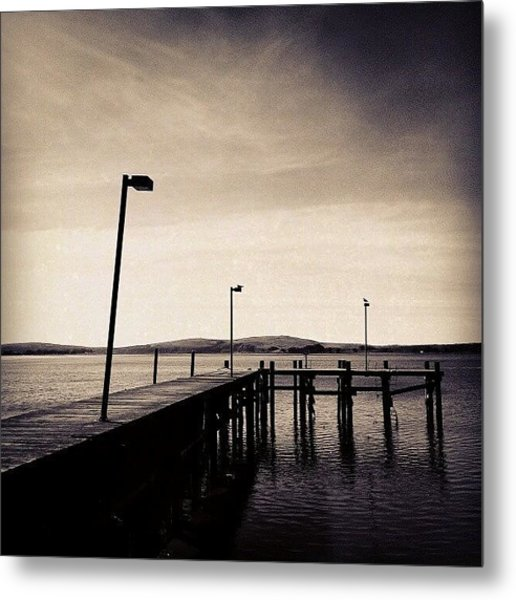 2 Bird Dock Metal Print