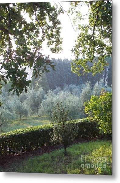 Dawn In Loppiano Metal Print