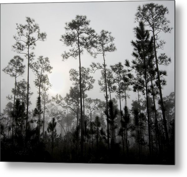 Early Morning Fog Landscape Metal Print by Rudy Umans