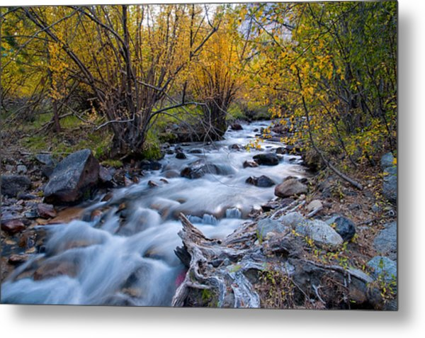 Fall At Big Pine Creek Metal Print