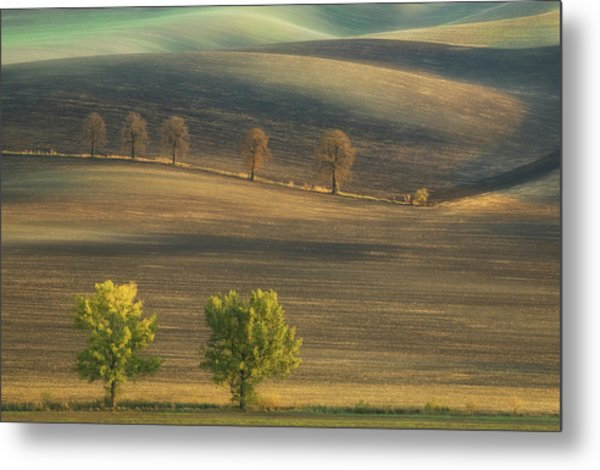 Fields... Metal Print